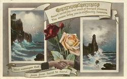 CHRISTMAS GREETINGS  two seascapes, roses, clasped hands