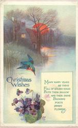 CHRISTMAS WISHES  rural sunset, kingfisher over water, violets