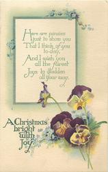 A CHRISTMAS BRIGHT WITH JOY  pansies