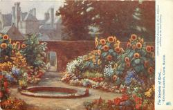 KITCHEN GARDEN, CAPEL MANOR