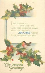 THE SEASON'S GREETINGS, NEW YEAR  robin on holly