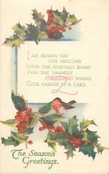 THE SEASON'S GREETINGS, CHRISTMAS  robin on holly