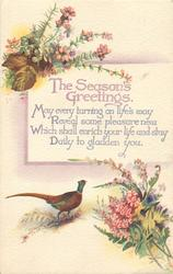 THE SEASON'S GREETINGS  pheasant, flowers