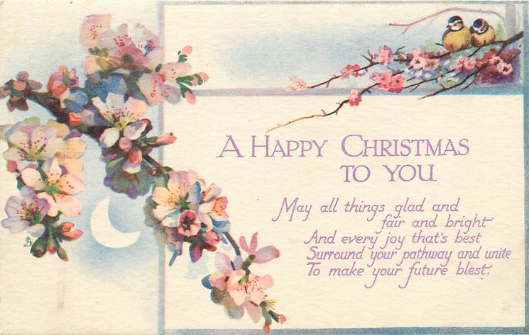 A HAPPY CHRISTMAS TO YOU  blossom