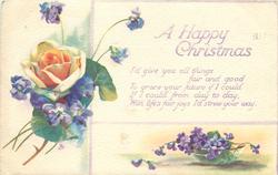 A HAPPY CHRISTMAS  violets & orange rose