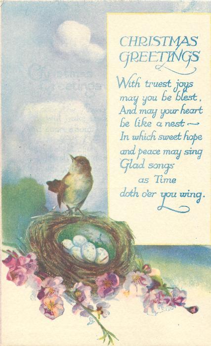 CHRISTMAS GREETINGS  nest, five eggs, bird, purple flowers