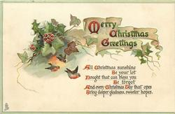 MERRY CHRISTMAS GREETINGS  holly & ivy,  3 robins fly