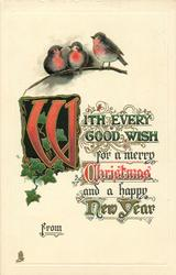 WITH EVERY GOOD WISH  three robins