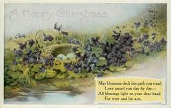 A HAPPY CHRISTMAS  nest among violets