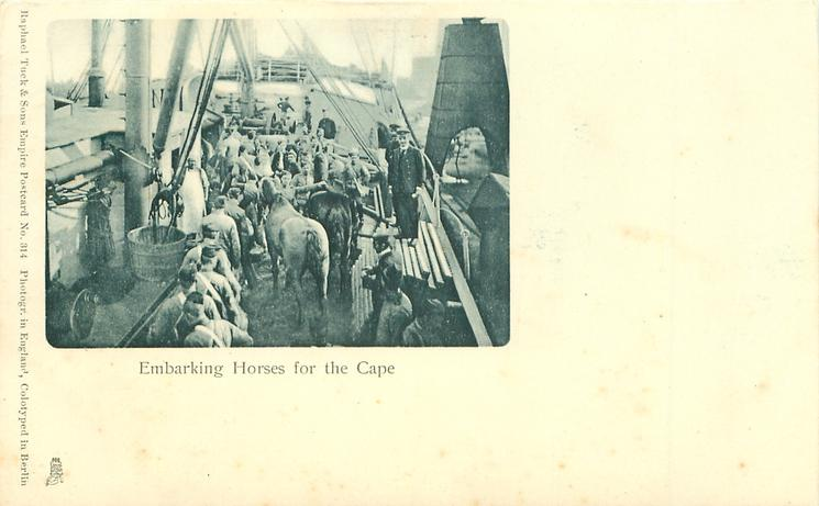EMBARKING HORSES FOR THE CAPE