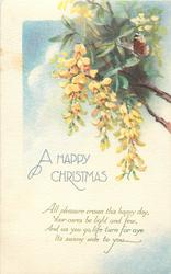 A HAPPY CHRISTMAS  yellow laburnum, butterfly