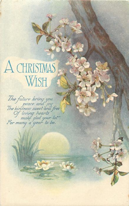 A CHRISTMAS WISH  blossom tree, water lilies, moonrise over water