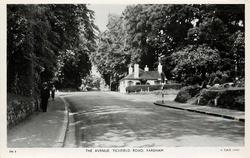 THE AVENUE, TICHFIELD ROAD