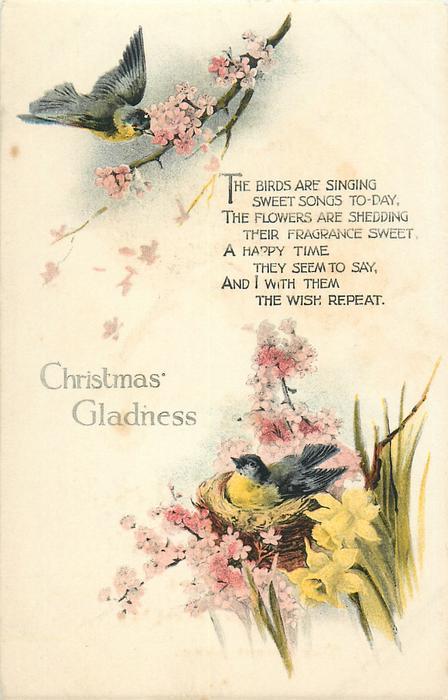 CHRISTMAS GLADNESS  two birds & nest, flowers