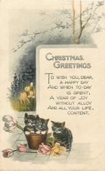 CHRISTMAS GREETINGS  two kittens in flower-pot, one beside, flowers around