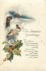 THE SEASON'S GREETINGS  two robins, holly, snow scene