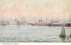 MAIL STEAMERS, SYDNEY
