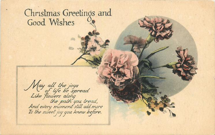 CHRISTMAS GREETINGS AND GOOD WISHES  pink carnations