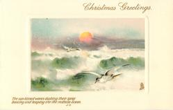 CHRISTMAS GREETINGS  setting sun, waves, no rocks, gulls