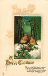 A HAPPY CHRISTMAS  two robins on holly, wood