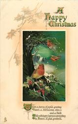 A HAPPY CHRISTMAS  three robins