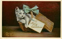 A MERRY CHRISTMAS (on card)  kitten in basket