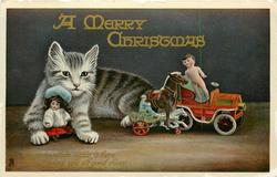 A MERRY CHRISTMAS  kitten & toys