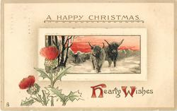 HEARTY WISHES  two highland cows in snow, red sky, thistles below left