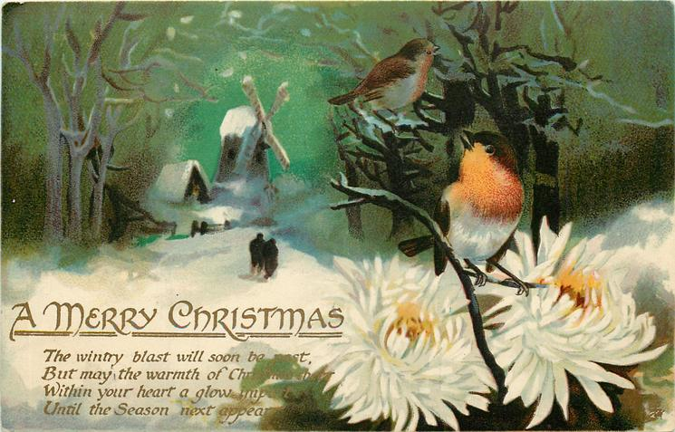 A MERRY CHRISTMAS  two robins, white chrysanthemums, windmill, snow