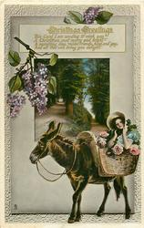 CHRISTMAS GREETINGS  donkey, girl in basket of roses, lilac above