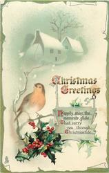 CHRISTMAS GREETINGS  robin on holly, snowy houses behind