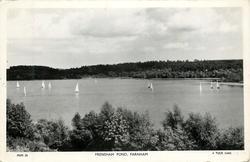 FRENSHAM POND many sail boats, no buildings