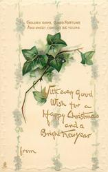 WITH EVERY GOOD WISH FOR A HAPPY CHRISTMAS AND A BRIGHT NEW YEAR  ivy