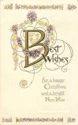 BEST WISHES FOR A HAPPY CHRISTMAS AND A BRIGHT NEW YEAR  violets
