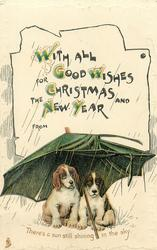 WITH ALL GOOD WISHES FOR CHRISTMAS AND THE NEW YEAR  puppies under umbrella