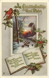 CHRISTMAS GREETINGS AND GOOD WISHES  sheep in inset, robin above, holly around, message on pages of book