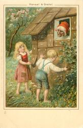 HANSEL & GRETEL  witch watches children take ginger-bread off house