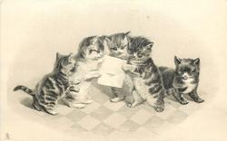 five kittens, three read letter
