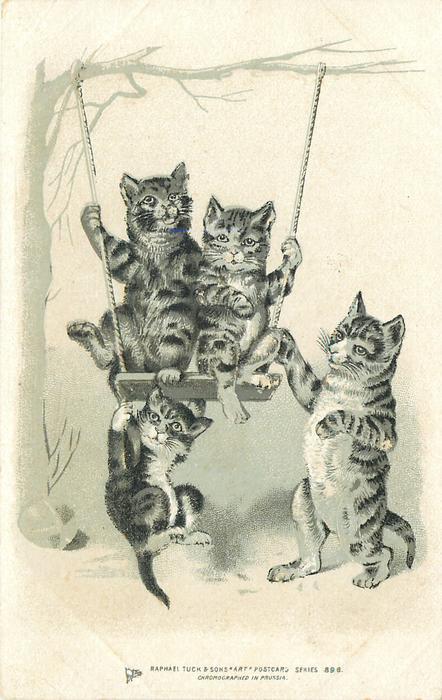 two kittens swing on seat, one hangs on below, cat pushes swing