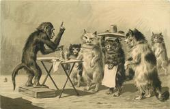 monkey standing on box behind table, selling medicine to an audience of cats