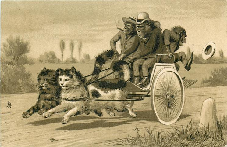 monkeys in a carriage drawn by two cats