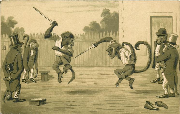 monkeys dueling