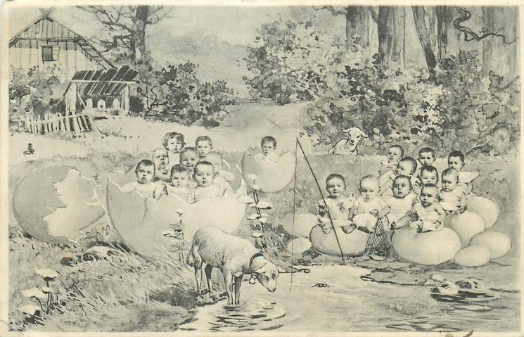 babies in eggs near a pond with lamb