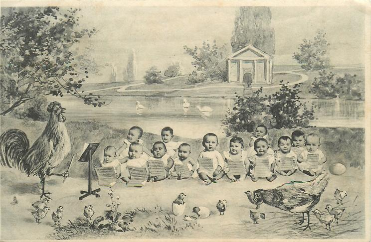 choir of babies conducted by cockerel