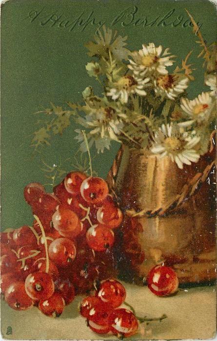 daisies and red currants