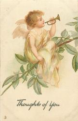 THOUGHTS OF YOU  angel with trumpet, on branch, looks right