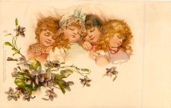 four sleeping girls, violets below