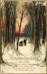A HAPPY CHRISTMAS TO YOU  man & woman gather firewood in snowy forest