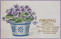 CHRISTMAS GREETINGS  bowl  of violets