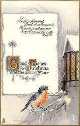 GOOD WISHES FOR CHRISTMAS AND THE COMING YEAR  robin below cottage window right